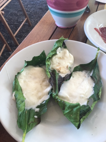 Grilled Mozzarella on Lemon Leaves