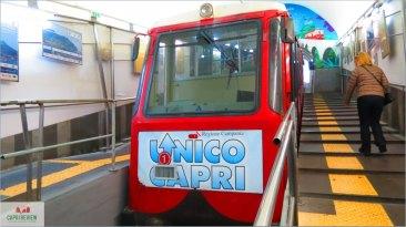 Capri 8
