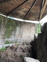 Julius Ceaser's Tomb